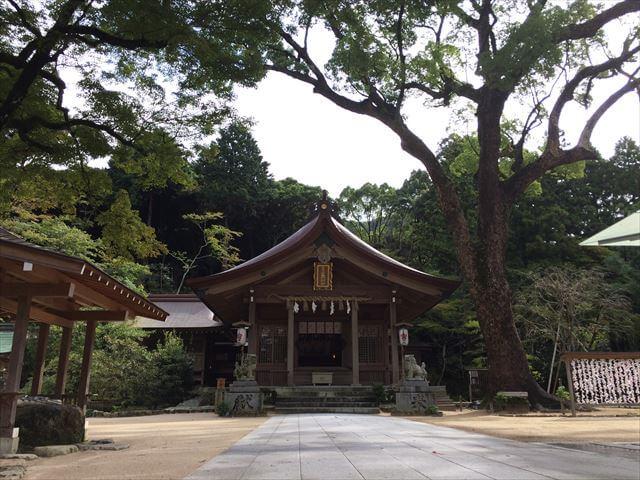 竈門神社(かまどじんじゃ)本殿