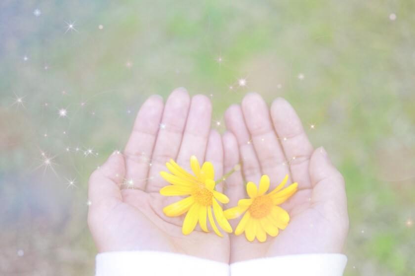 両手のひらに黄色い花二つ
