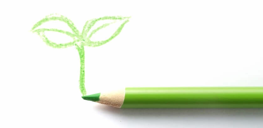 黄緑の色鉛筆と新芽の絵
